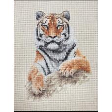 Тигр (B2289 )