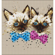 Кошки (B2298)