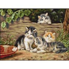 Кошки (B556)