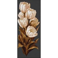 Тюльпаны (B292)