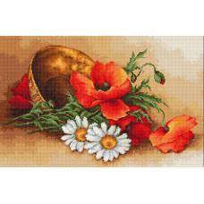 Полевые цветы (B500 )