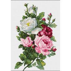 Букет из роз (B2285)