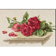 Красные розы (BL22411)