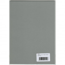 Картон листовой Silver Frost (AS940)