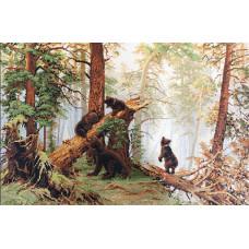 Утро в сосновом лесу (B452)