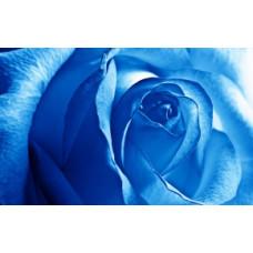 Пигмент жидкий голубой неоновый, 5 г