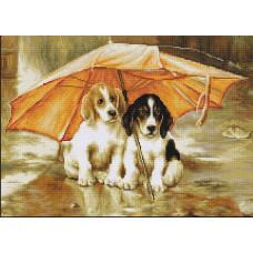 Двое под зонтом (G550 )