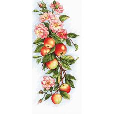 Композиция с яблоками (B211)