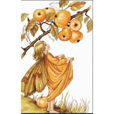 Дикая яблоня (B297)