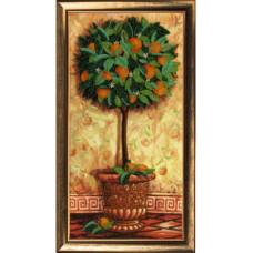 Апельсиновое дерево (288)
