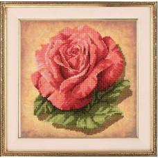 Набор для вышивания крестом Риолис Роза (РТ-0070)