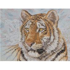 Сибирский тигр (45432)
