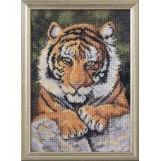 Бенгальский тигр (45475)