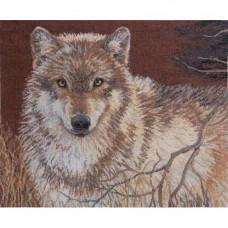 Серый волк (45477)