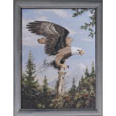 Кричащий орел (45478)