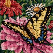 Бабочка на цинии (7232)