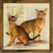 Абиссинские кошки (1671)