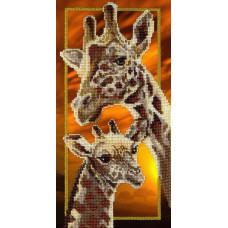 Жирафы (БГ-177)