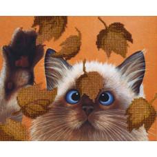 Котик в листьях (БГ-182)
