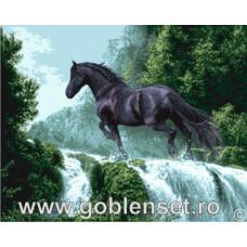 Набор для вышивания GOBLENSET Черный красавец (G961)