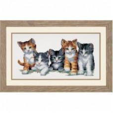 Кошачья семья (PN-0012073)