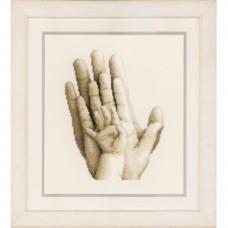 Руки (PN-0154230)**
