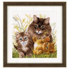 Семья котов (PN-0156114)**