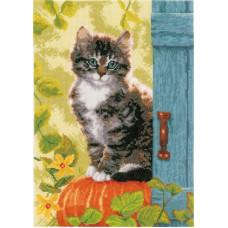 Кот и тыква (PN-0158303)**