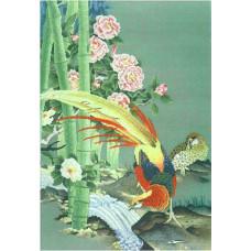Райские птицы (R159)