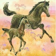 Набор для вышивания крестом Риолис Лошадь с жеребёнком (РТ-0004)