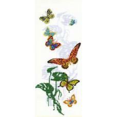 Экзотические бабочки (903)