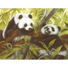 Панды (505)