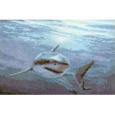 Под водой (472)