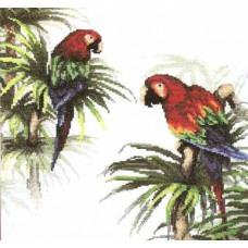 Набор для вышивания крестиком Чарівна мить Попугаи (426)