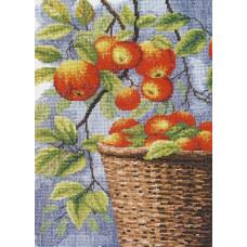 Яблоки в корзине (474)