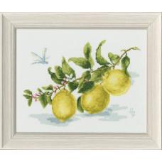 Набор для вышивания крестиком Золотое руно Веточка лимона (по мотивам картины Н. Зубковой) (ФС-006)
