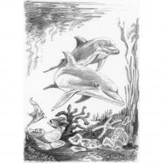 Набор для рисования карандашами Royal Brush Дельфины (SKMIN-101)