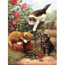 Набор для рисования по номерам Royal Играющие котята (ROYPJS.52)