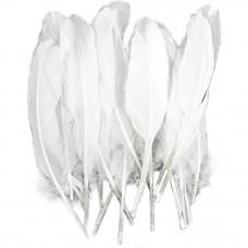 Перья Midwest Design белые Goose Round White, 22 шт. (MDI38190)