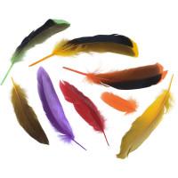 Микс утиных натуральных перьев (B253M)