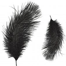 Страусиные перья Zucker, черные (B802-B)