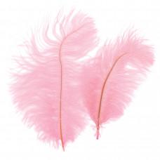 Страусиные перья Zucker розовые (B802-LP)
