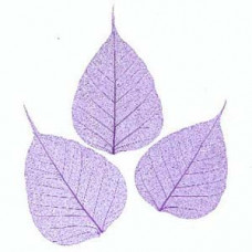 Листья, лепестки