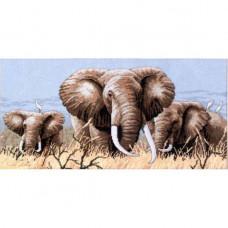 Африканские слоны (4365)