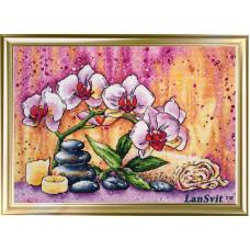 Магическая орхидея (А-008)